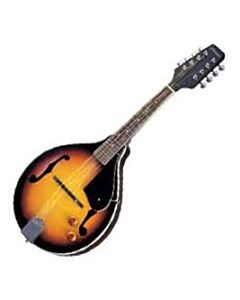 Fits Archtop A-Style Mandolins
